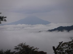 富士山も雲海から見えていた。